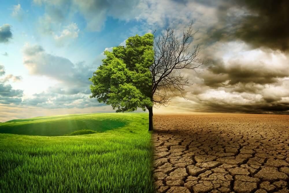 Bezdzietność w czasach alarmu klimatycznego